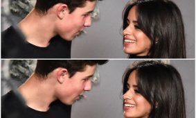 Camila Cabello y Shawn Mendes, Mas que una amistad
