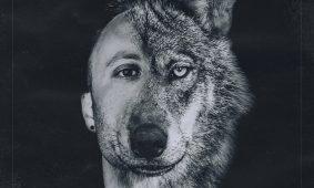 nuevos talentos city wolf 2
